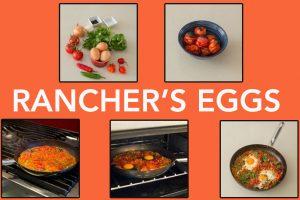 ranchers-eggs