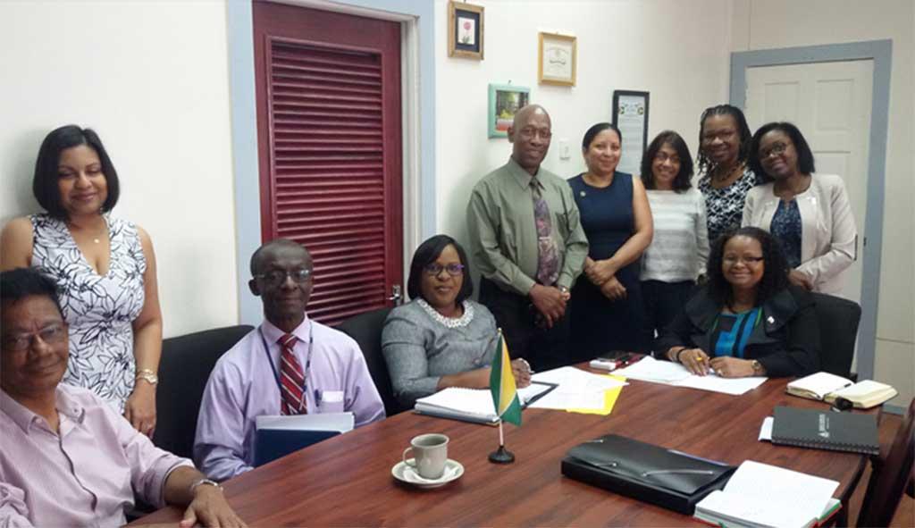 Project team members meeting