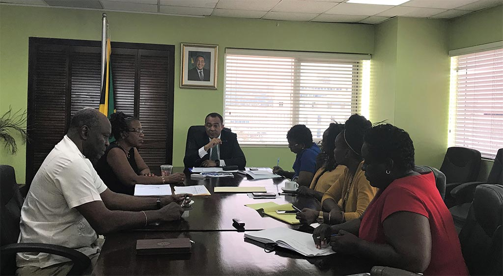 Jamaica's Minister of Health Designated As FaN Policy Entrepreneur